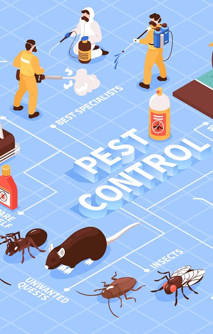 A Fly In the Ointment – What Is a Pest Control?